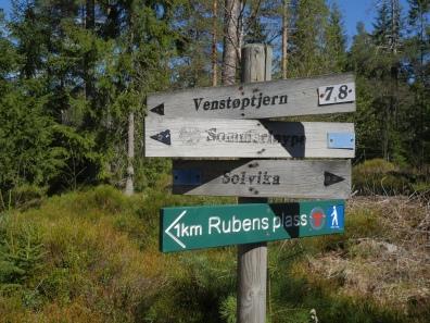 Rubens plass er en kilometers spasertur langs Galtetjønnveien fra parkeringsplassen i Solvika. (Foto: Rune Myrland)